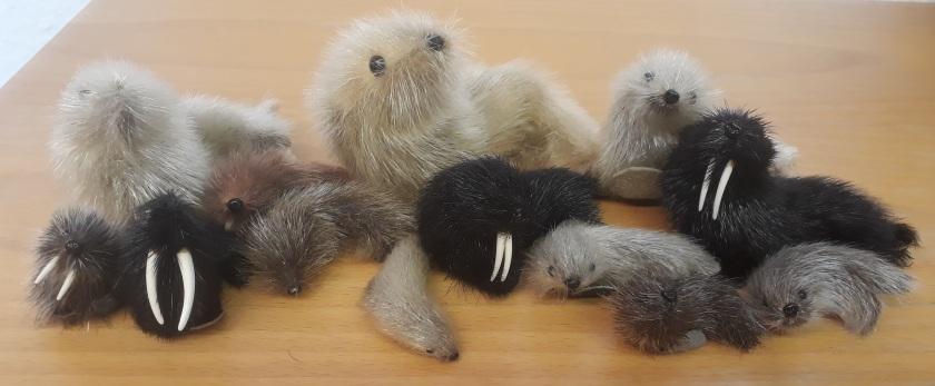 13 verschieden große Kuscheltiere in Form Robben, Seehunden und Walrössern.